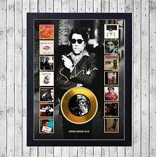JOAQUIN SABINA DISCOGRAFIA CUADRO GOLD O PLATINUM CD EDICION LIMITADA. FRAMED