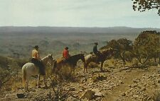 Big Bend National Park TX Trailriders at the South Rim Postcard 1950s