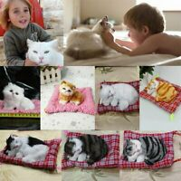 Mini Lovely Simulation Animal Doll Plush Sleeping Cats with Sound Kids Toy tL
