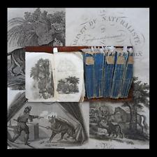 ANIMALI CACCIA - CABINET DU NATURALISTE - 1818 PARIS 65 tav. storia naturale