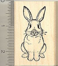 Rabbit Rubber Stamp, Easter Bunny, or House Pet H4804 WM
