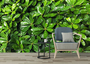 3D Green Leaf with Water Drops Self-adhesive Living Room Wallpaper Wall Murals