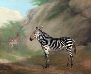 Zebra by Jacques-Laurent Agasse - 60cm x 49.4cm Art Paper Print