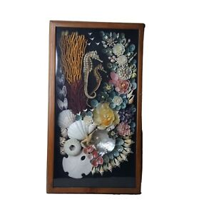 Shell Art Flowers SIGNED Julio Meza Framed Shadow Box Seahorse Starfish 10 x 18