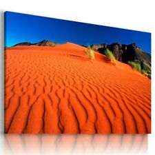 AFRICA SAHARA CAMEL Wild Life Canvas Wall Art Picture AN318