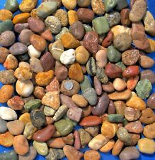 30 lbs Lot #1 Extra Small Colorful River Rocks Water Feature Aquarium Landscape