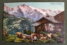 CPA. Sennhütte und JUNGFRAU. Chalet. Traite des Vaches. Alpage. Suisse. 1911.