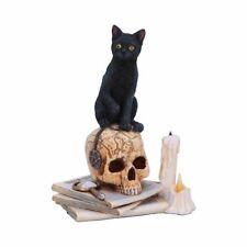 More details for new spirits of salem lisa parker black cat figurine statue a nemesis gift figure