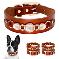 Brown Genuine Leather Small Dog Collar Studded Decoration French Bulldog Pug S/M