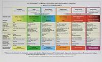 Autonomic Nervous System Table: Laminated Card by Rothschild, Babette, NEW Book,