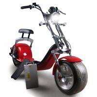 Nuevo Bicicleta Eléctrica Eléctrico Scooter Citycoco 1200W 20AH Eec /