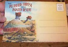 1929 LINEN PC POSTCARD PETRIFIED FOREST PAINTED DESERT NAVAJO ARAPAHO ARIZONA AZ
