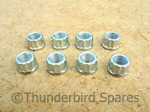 Cylinder Base Nuts,12 Point, Set(8), Triumph T100 1969-74, T120 1969-72, 21-0692