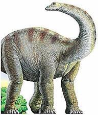 Diplodocus Board Books Andrea Lorini
