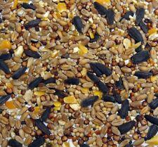 Superior Wild Bird Food Seed 20kg (Fresh Quality Multi purpose corn + seeds)