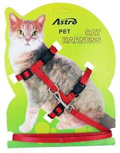 Red Adjustable Nylon Pet Cat Harness and Leash ~ Kitten Belt Collar with lead