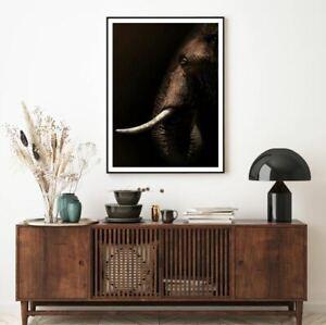 Elephant Portrait Closeup View Print Premium Poster High Quality choose sizes