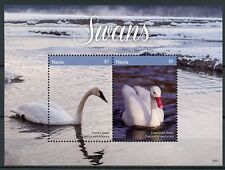 Nevis 2018 MNH Swans Coscoroba Tundra Swan 2v S/S Birds Stamps
