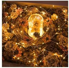 LED Battery Powered String Fairy Lights Copper Wire Xmas Decor