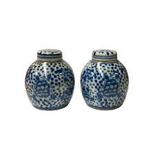Pair Blue White Mini Oriental Graphic Porcelain Ginger Jars ws945