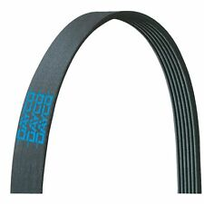 Serpentine Belt DAYCO 5100670 fits 02-04 Kenworth W900 15.0L-L6