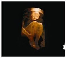 FREE US SHIP. on ANY 3+ CDs! ~Used,Good CD Alice In Chains: Nothing Safe-The Bes