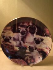 "Danbury Mint Limited Edition 8� Pug Family ""Warming Up� Collectors Plate"