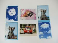 6-PACK AVANTI OUT OF PRINT GREETING CARDS, VALENTINES, GRADUATION, BLANK, CAT