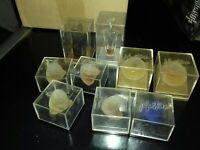 Gros lot de 9 miniatures Montana 7 pleines +boîtes en plastique