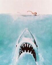 Jaws 8x10 Foto Estelar Foto 245577