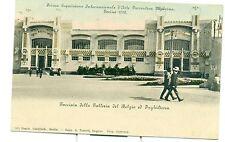 TORINO 1902 - ESPOSIZIONE INT.LE D'ARTE MODERNA Facciata Gall. Belgio e Inghilte