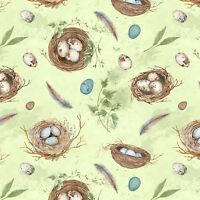 Fabric Birds Nests Feathers Eggs on Pastel Green Cotton 1/4 yard BIN