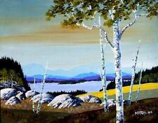 Original Northern Quebec Landscape - AFTERNOON OVERLOOK (Mitris 2004)