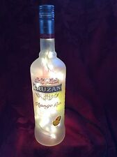 NEW Bling Electric LAMP 750ml CRUZAN Mango Rum Empty LIQUOR BOTTLE White LEDs