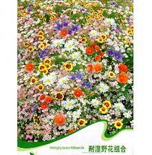 Colorful Waterlogging Tolerance Wildflowers Mix Flower Seed ~200 Seeds~