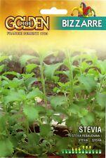 8 Semi/Seeds ZUCCHERO Stevia Rebaudiana