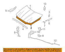 JAGUAR OEM  X-Type Hood-Insulator Fits All Years C2S44059