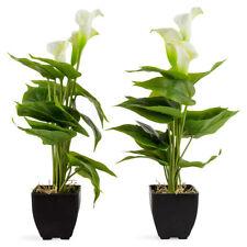 40cm ArtificialCalla LilyPotted Plant - Set of 2 Faux Plant Pot Shrub Tree