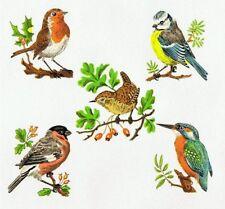 2 Sets of 5 Garden Birds Decals Bullfinch Bluetit Kingfisher Robin Wren (Small)