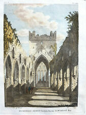 Dunbrody Abbey Co Wexford Francis Grose Antique print 1797 Ireland handcoloured