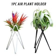 Iron Rack Garden Flower Pot Air Plant Holder Home Decoration Tillandsia Stand