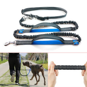 Pet Traction Rope Elastic Hands Free Dogs Lead Running Belt Jogging Waist Leash