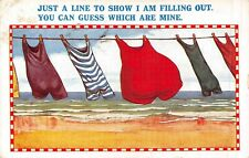 POSTCARD  COMIC  SEASIDE  Clothes  Line  Fat  Lady  Bathing  Costume