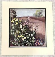 1955 Vintage Stampa British Fiori Selvatici Floreale Still Life Narcisi Primula