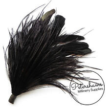 Ostrich & Stripped Coque Feather Millinery Fascinator Hat Mount