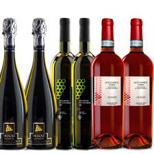 VINO BIANCO FALANGHINA,ROSSO AGLIANICO E SPUMANTE PROSECCO BRUT 6 Bottiglie