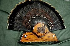 WILD TURKEY HUNTING TAIL BEARD MOUNT OAK HOLDER TROPHY PANEL PLAQUE TAXIDERMY