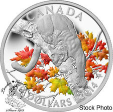 Canada 2014 $20 Cougar Perched on a Maple Tree Coloured Silver Coin