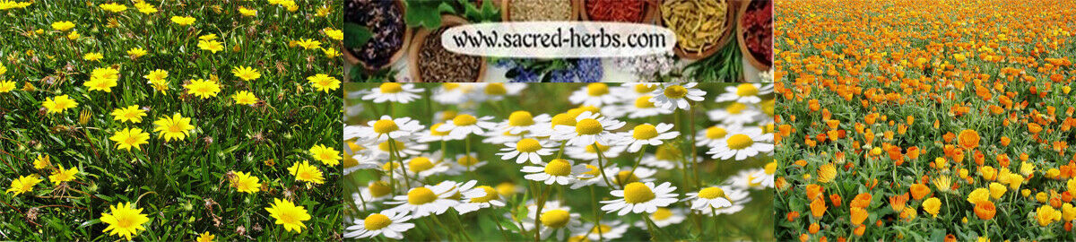 Sacred Herbs L.L.C.