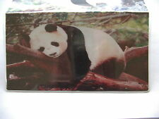 Panda bear I can sleep anywhere Vinyl Checkbook cover